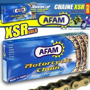 Chaîne AFAM GOLD 120 Maillons